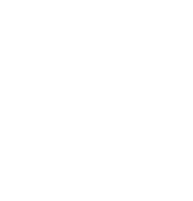 Logo von Study & Work International